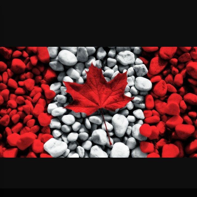 Happy Canada Day! We are open until 3pm today and have lots to satisfy your healthy cravings #glutenfree #vegan #soyfree #canadianvegan #glutenfreecanada