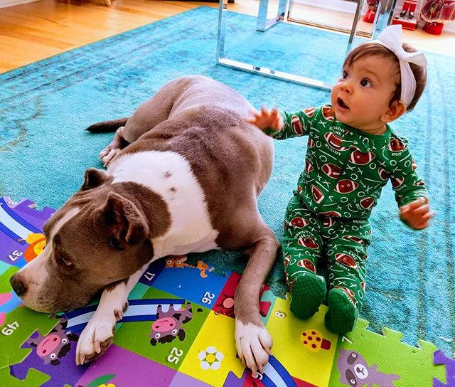 Our little munchkin is Superbowl ready and celebrating her 9months today alongside her bestie Lux  #superbowlbaby #daddygamedaygirl #nflbaby #doglover #9monthbaby